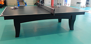 Olhausen Table Tennis Furniture Style